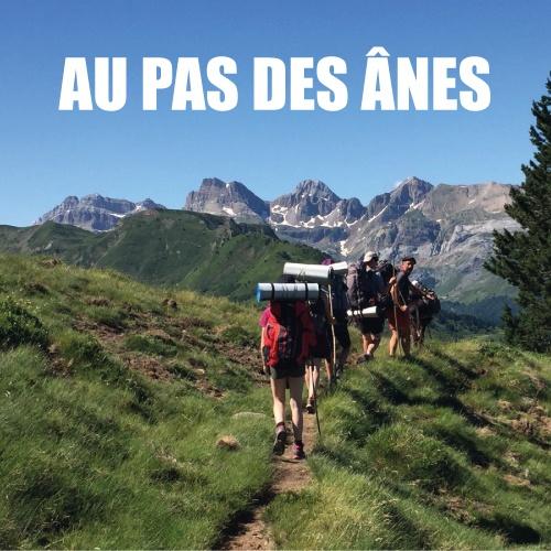 Read more about the article Protégé: BLOG – Au pas des ânes